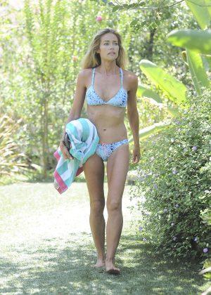 Bikini In A Denise Richards