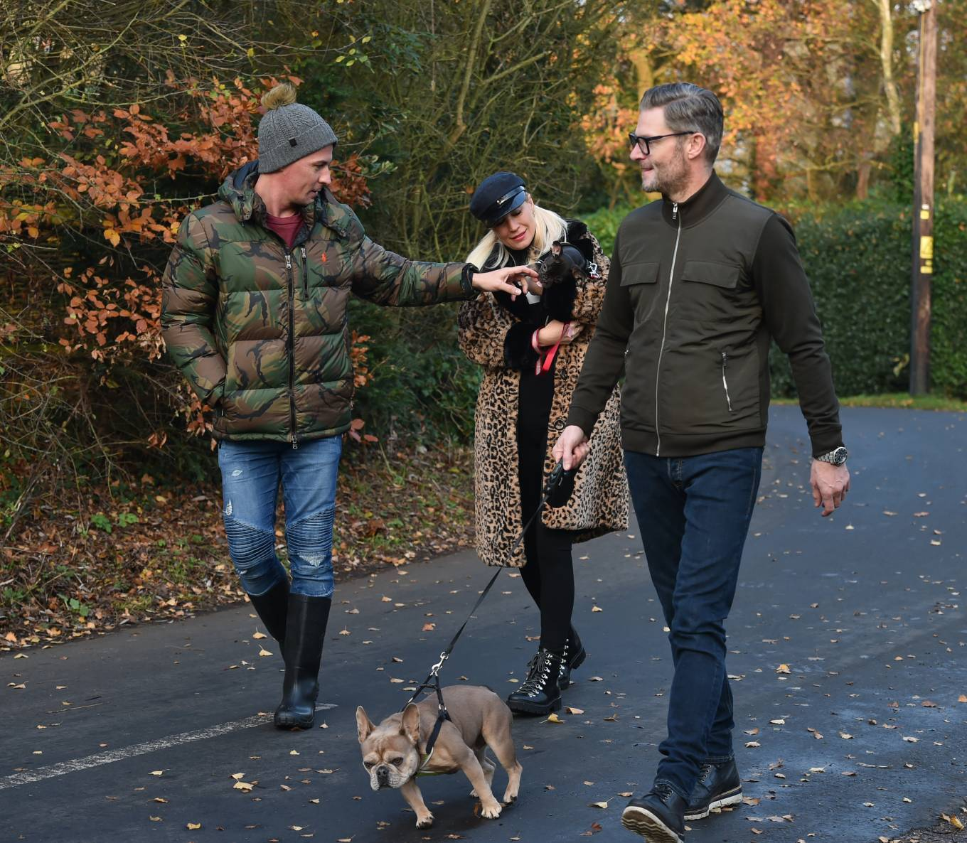 Denise Van Outen - Takes her dogs Tilly and Remy for a walk in the Essex