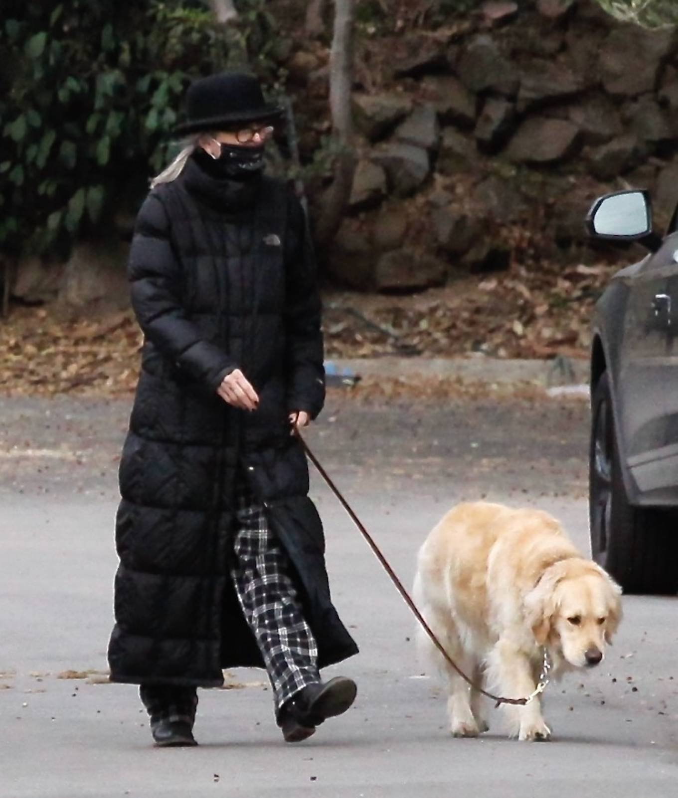 Diane Keaton - Out in a pajamas for a dog walk in Brentwood