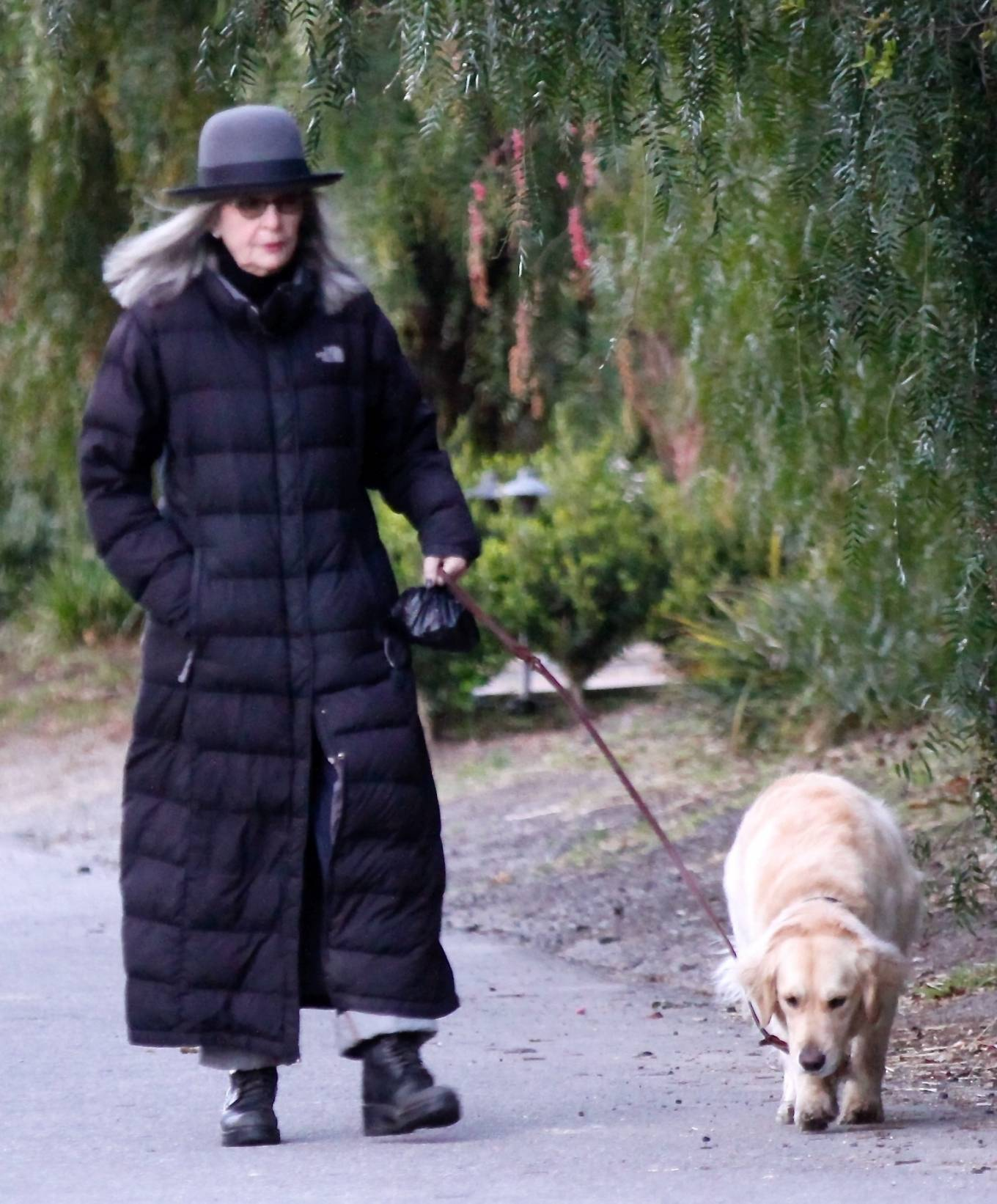 Diane Keaton - Takes her puppy Reggie out for a stroll in Brentwood