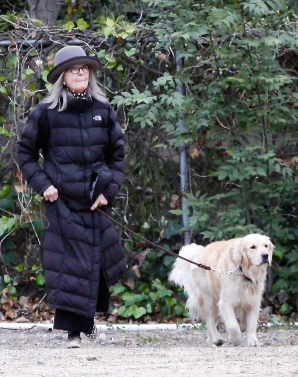 Diane Keaton - With her golden retreiver Reggie out for a walk in Brentwood