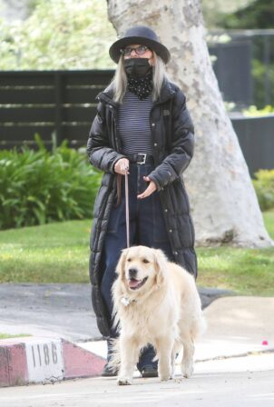 Diane Keaton - With her golden retriever out for a walk in Los Angeles