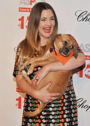 Drew Barrymore - 19th Annual ASPCA Bergh Ball in New York