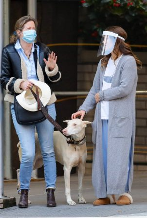 Drew Barrymore - Rescue of a New Yorker whose dog the victim of a car hit-and-run
