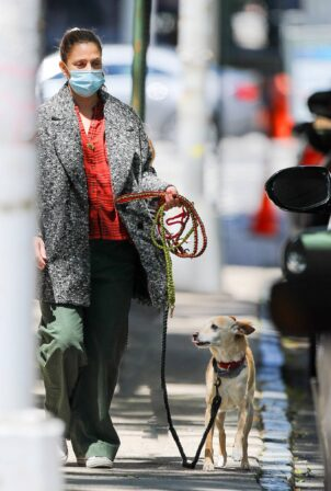 Drew Barrymore - Seen with her dog while out and about in New York