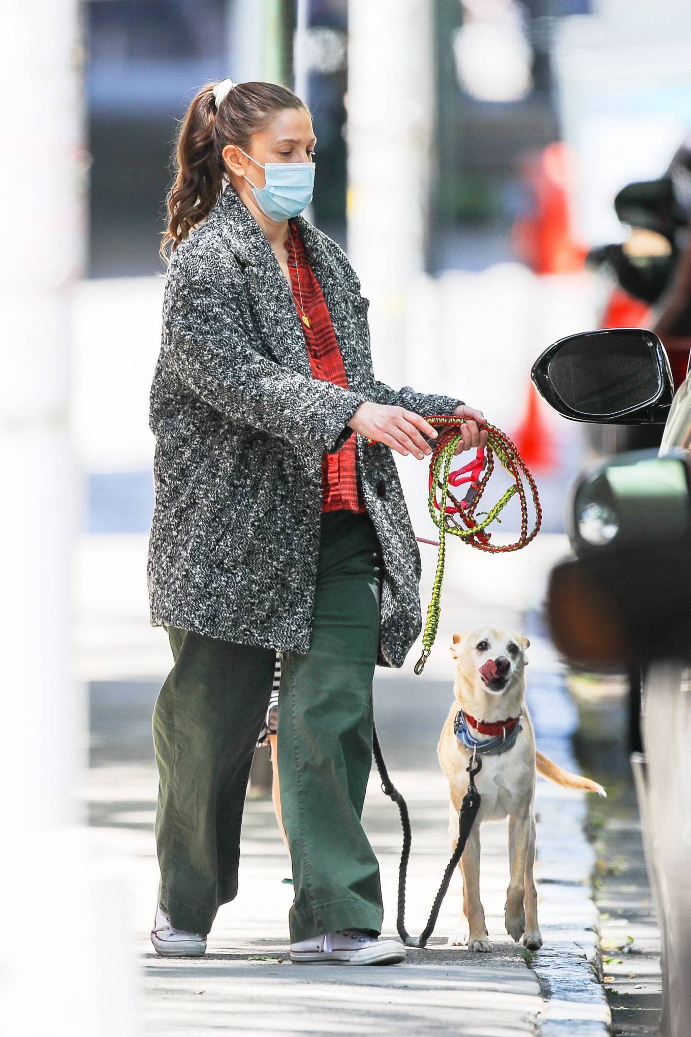 Drew Barrymore 2021 : Drew Barrymore – Seen with her dog while out and about in New York-04