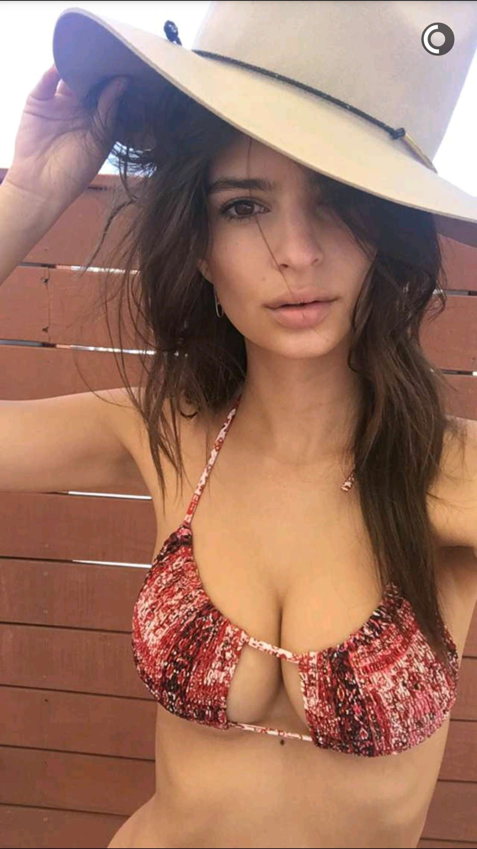 Emily Ratajkowski in Bikini - Instagram