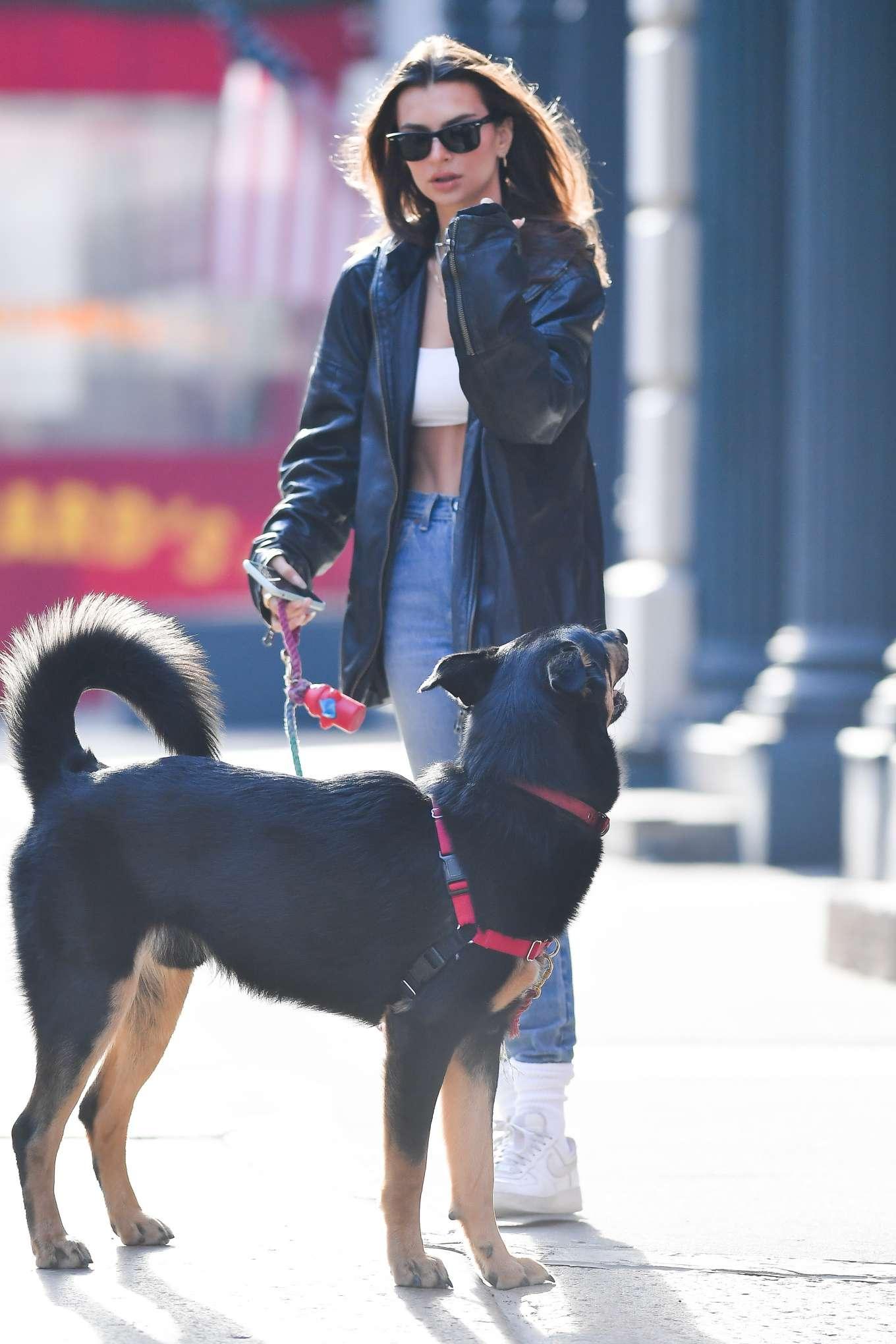 Emily Ratajkowski 2020 : Emily Ratajkowski ith her dog Colombo in New York-21