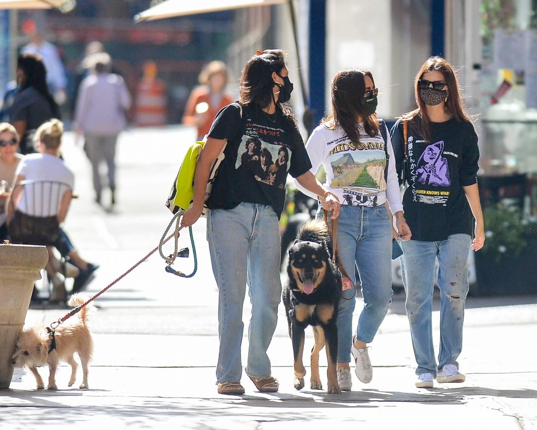 Emily Ratajkowski 2020 : Emily Ratajkowski – Out with her dog in downtown New York-03