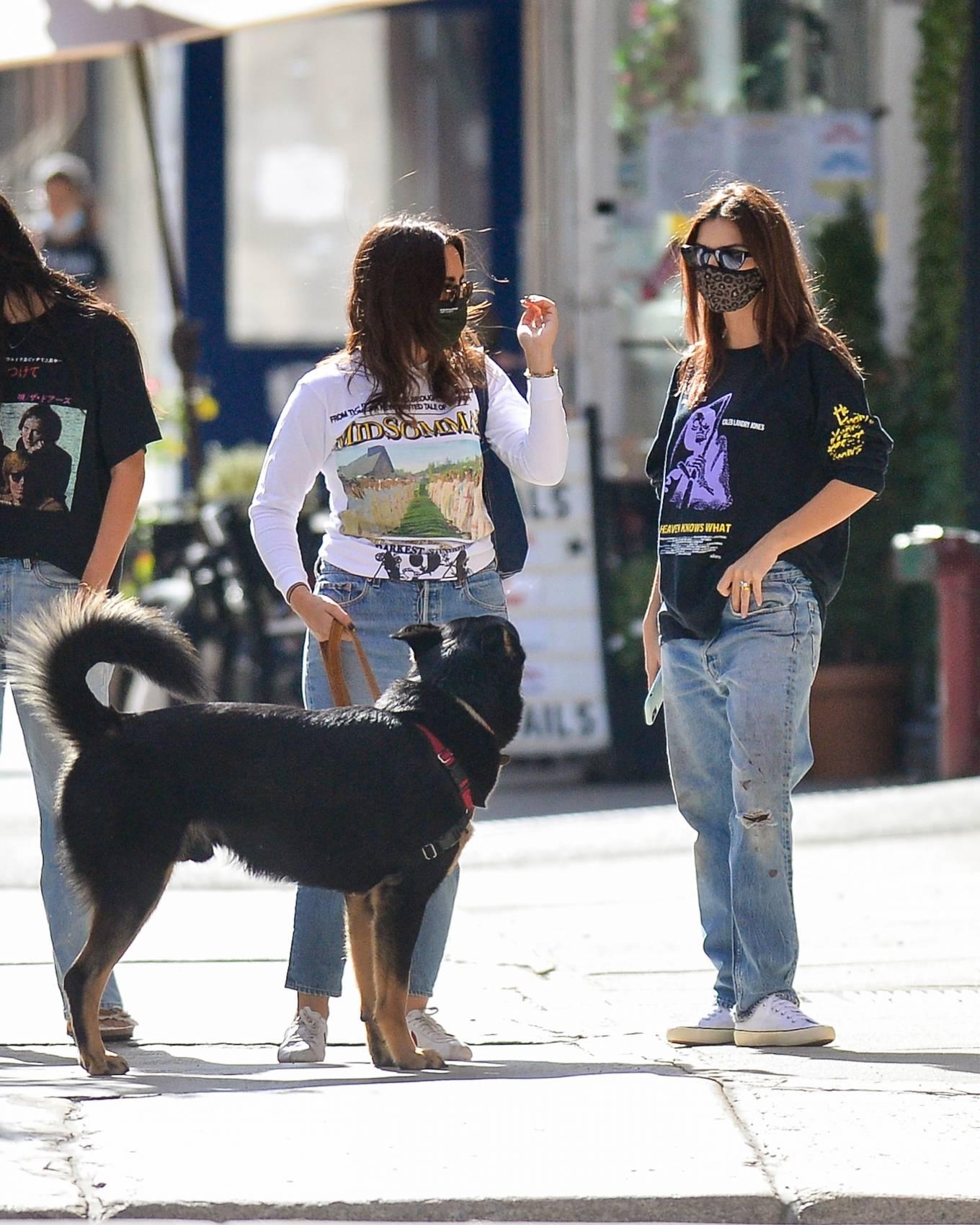 Emily Ratajkowski 2020 : Emily Ratajkowski – Out with her dog in downtown New York-13