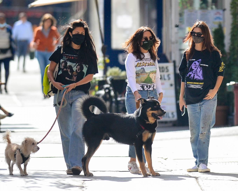 Emily Ratajkowski 2020 : Emily Ratajkowski – Out with her dog in downtown New York-15