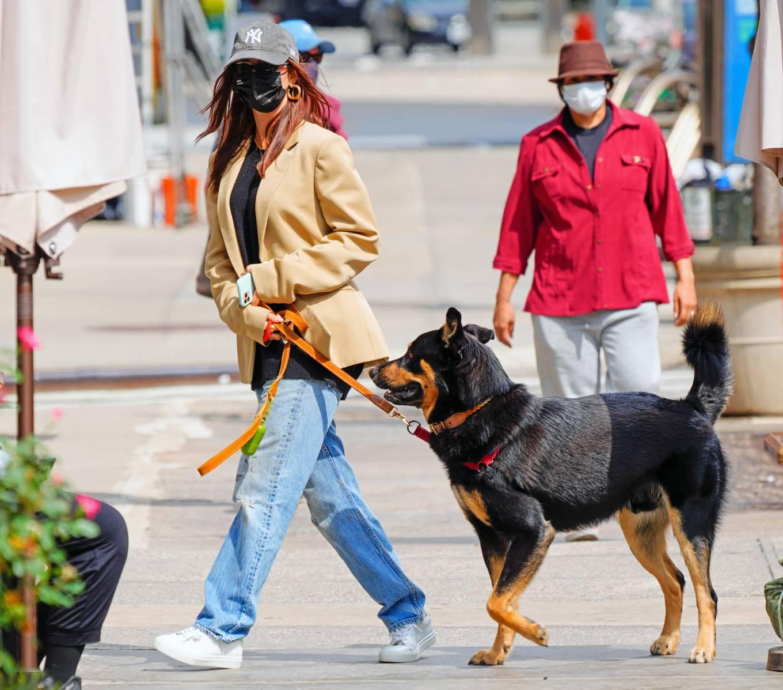 Emily Ratajkowski 2020 : Emily Ratajkowski – Out with her dog in New York-01