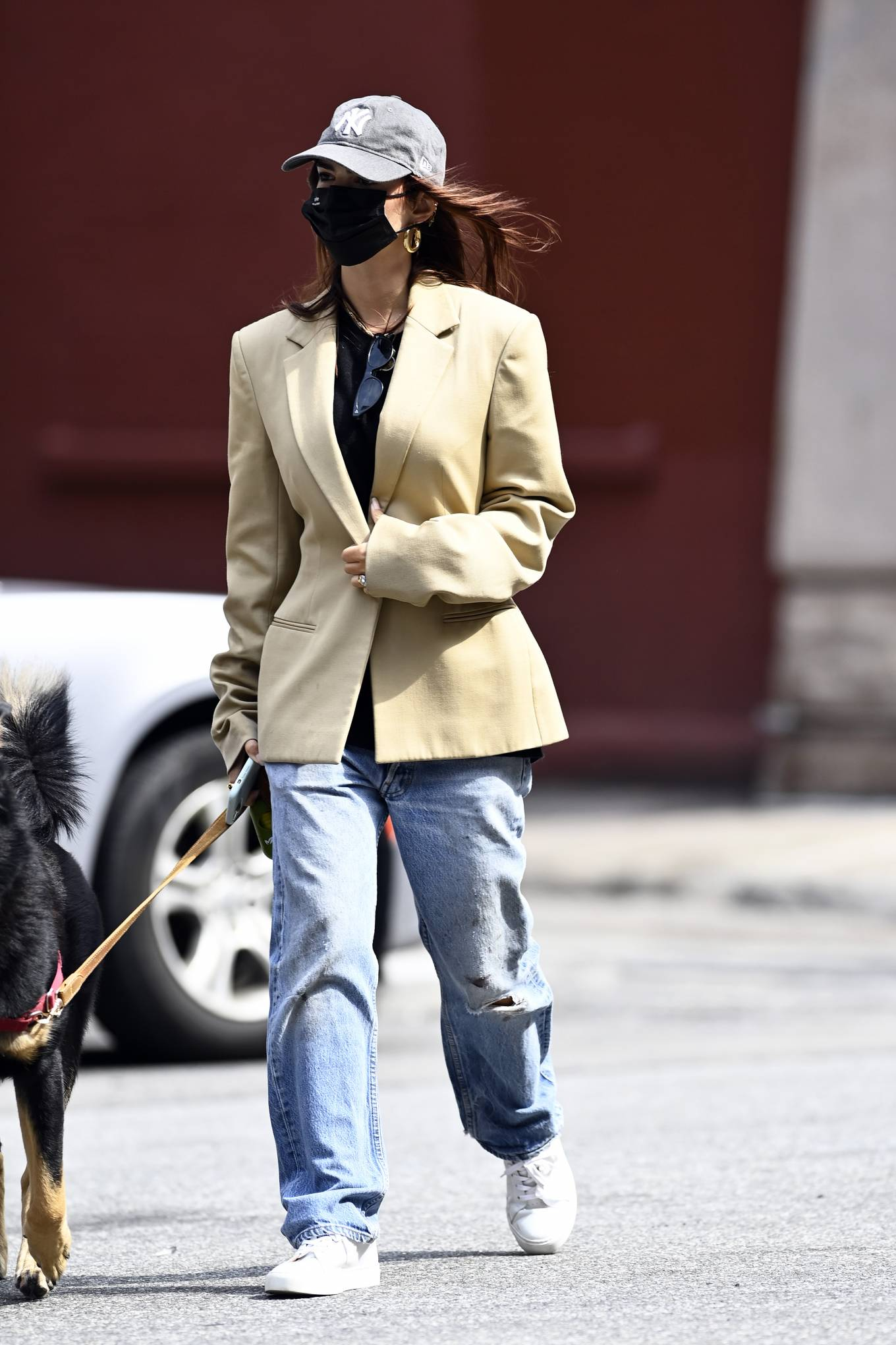 Emily Ratajkowski 2020 : Emily Ratajkowski – Out with her dog in New York-02