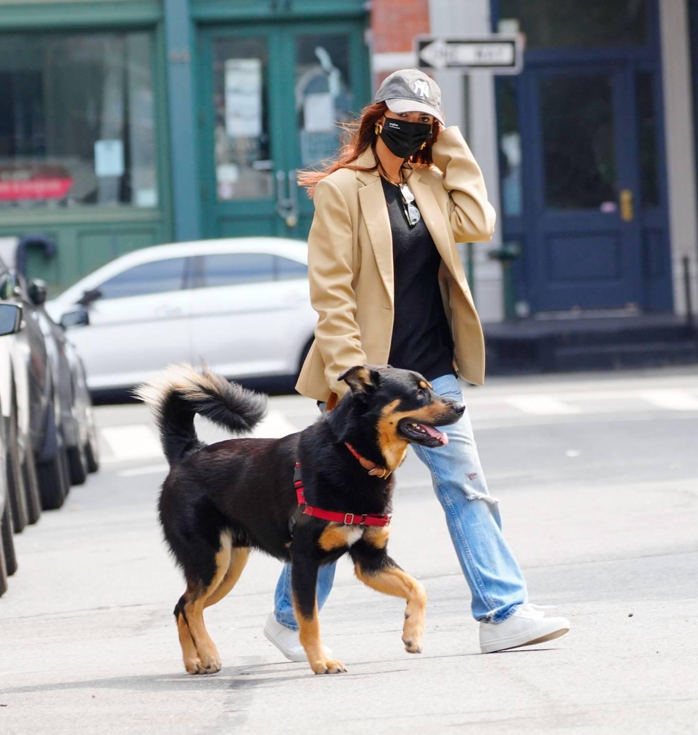 Emily Ratajkowski 2020 : Emily Ratajkowski – Out with her dog in New York-09