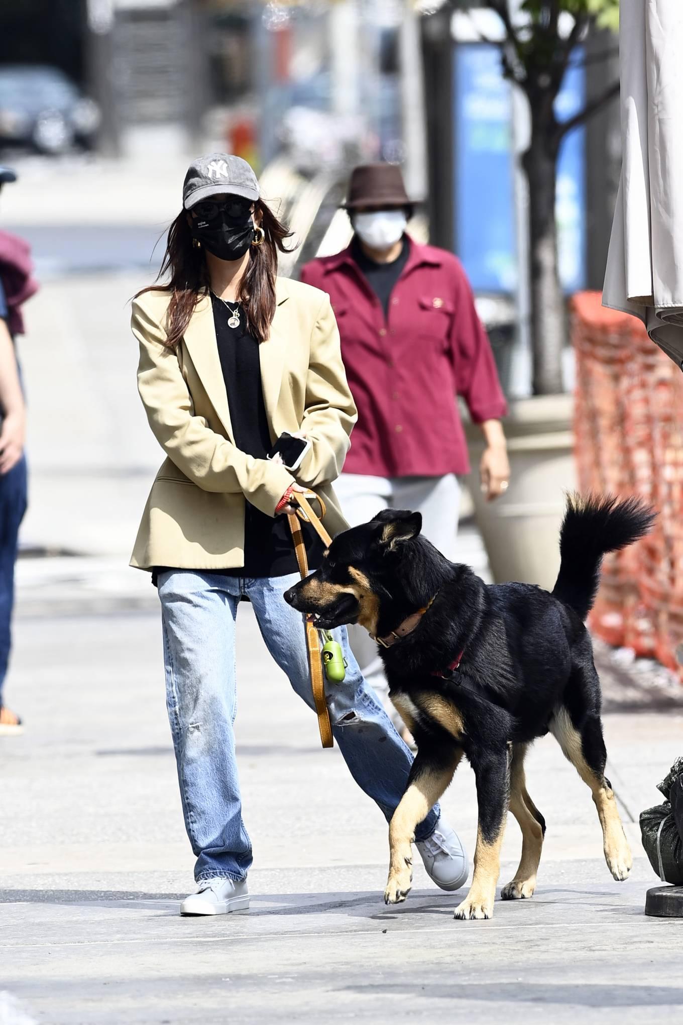 Emily Ratajkowski 2020 : Emily Ratajkowski – Out with her dog in New York-16