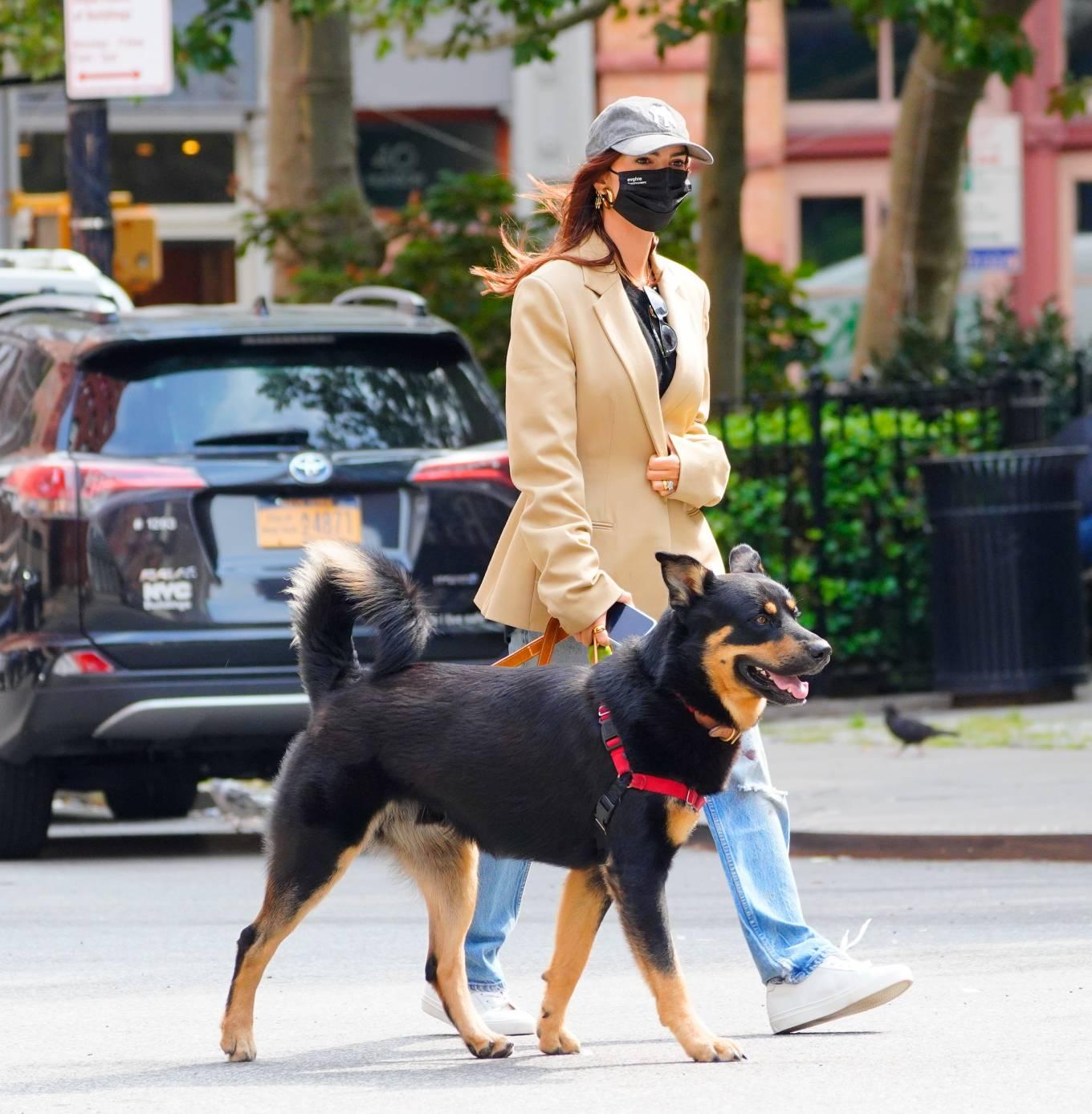 Emily Ratajkowski 2020 : Emily Ratajkowski – Out with her dog in New York-17