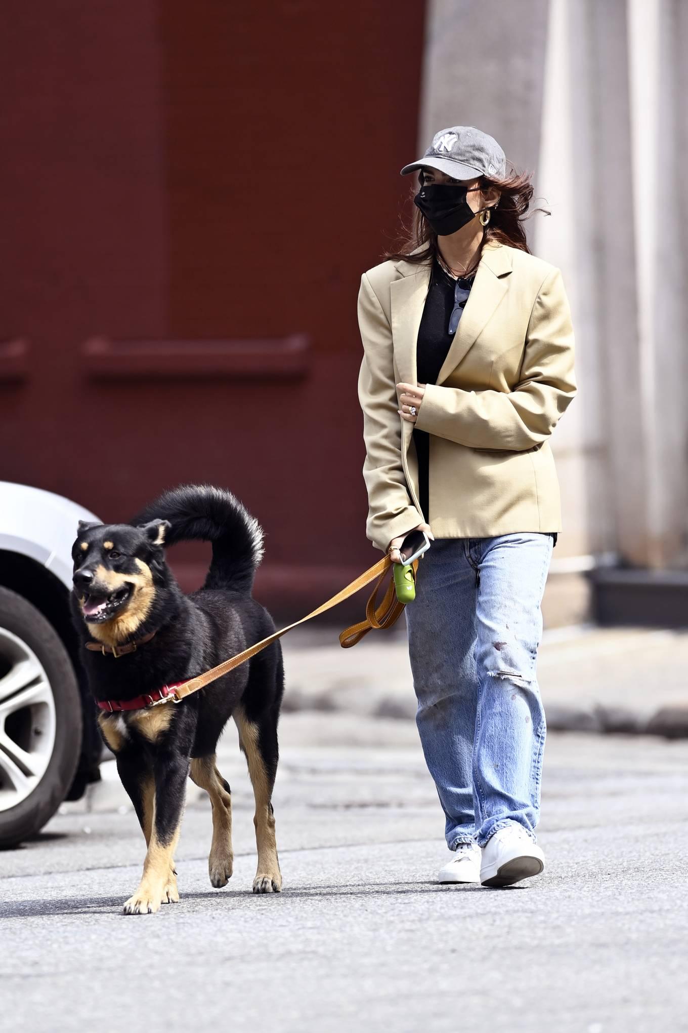 Emily Ratajkowski 2020 : Emily Ratajkowski – Out with her dog in New York-18