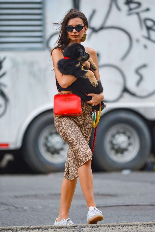 Emily Ratajkowski - Out with her dog in NYC