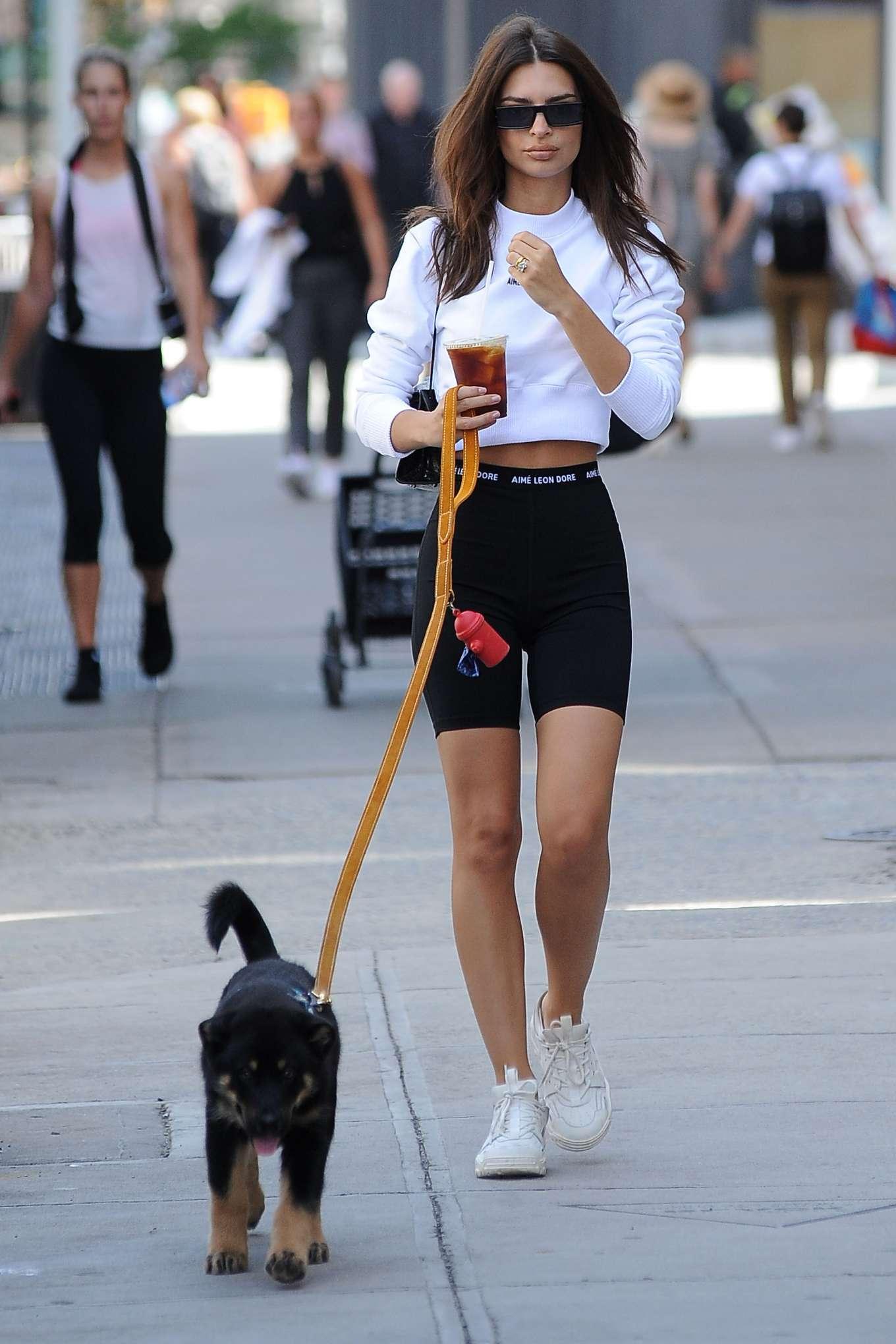 Emily Ratajkowski 2019 : Emily Ratajkowski: Seen while taking her dog Colombo for a walk in NYC-09