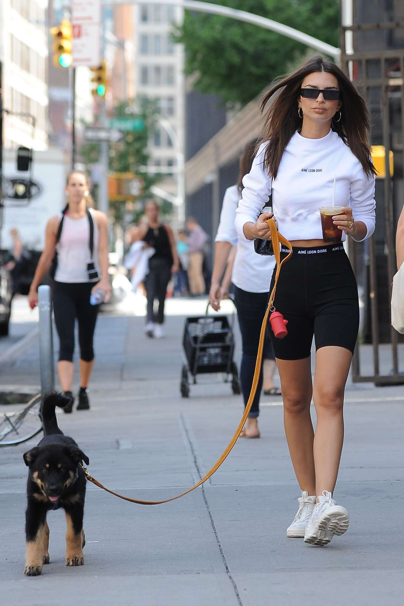 Emily Ratajkowski 2019 : Emily Ratajkowski: Seen while taking her dog Colombo for a walk in NYC-15