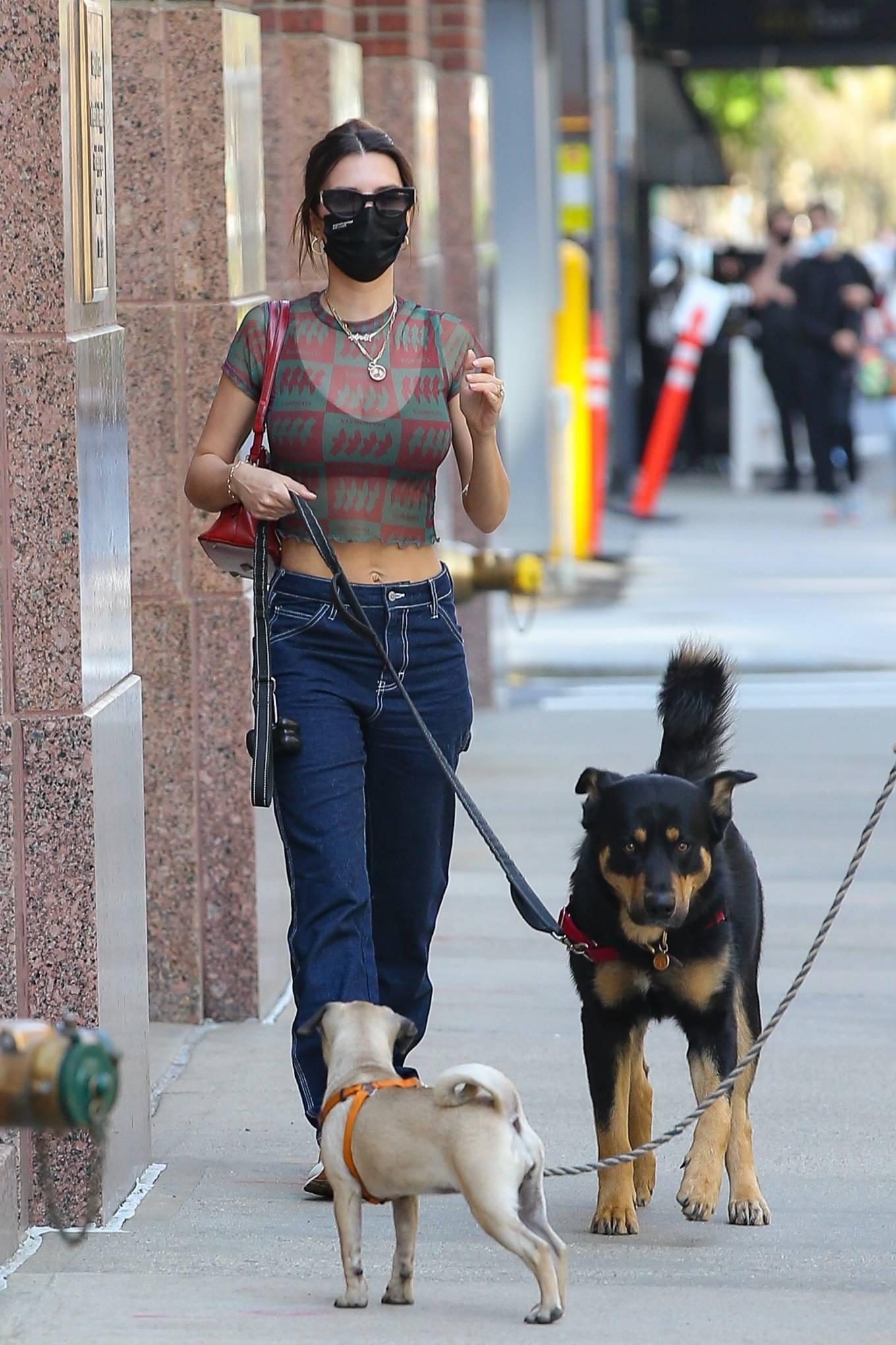 Emily Ratajkowski 2021 : Emily Ratajkowski – Steps out for a walk in New York-04