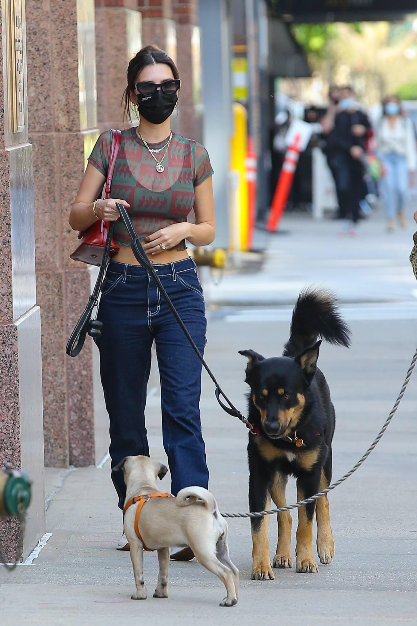Emily Ratajkowski 2021 : Emily Ratajkowski – Steps out for a walk in New York-07