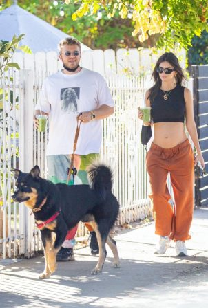 Emily Ratajkowski take a stroll with houseband in Los Angeles