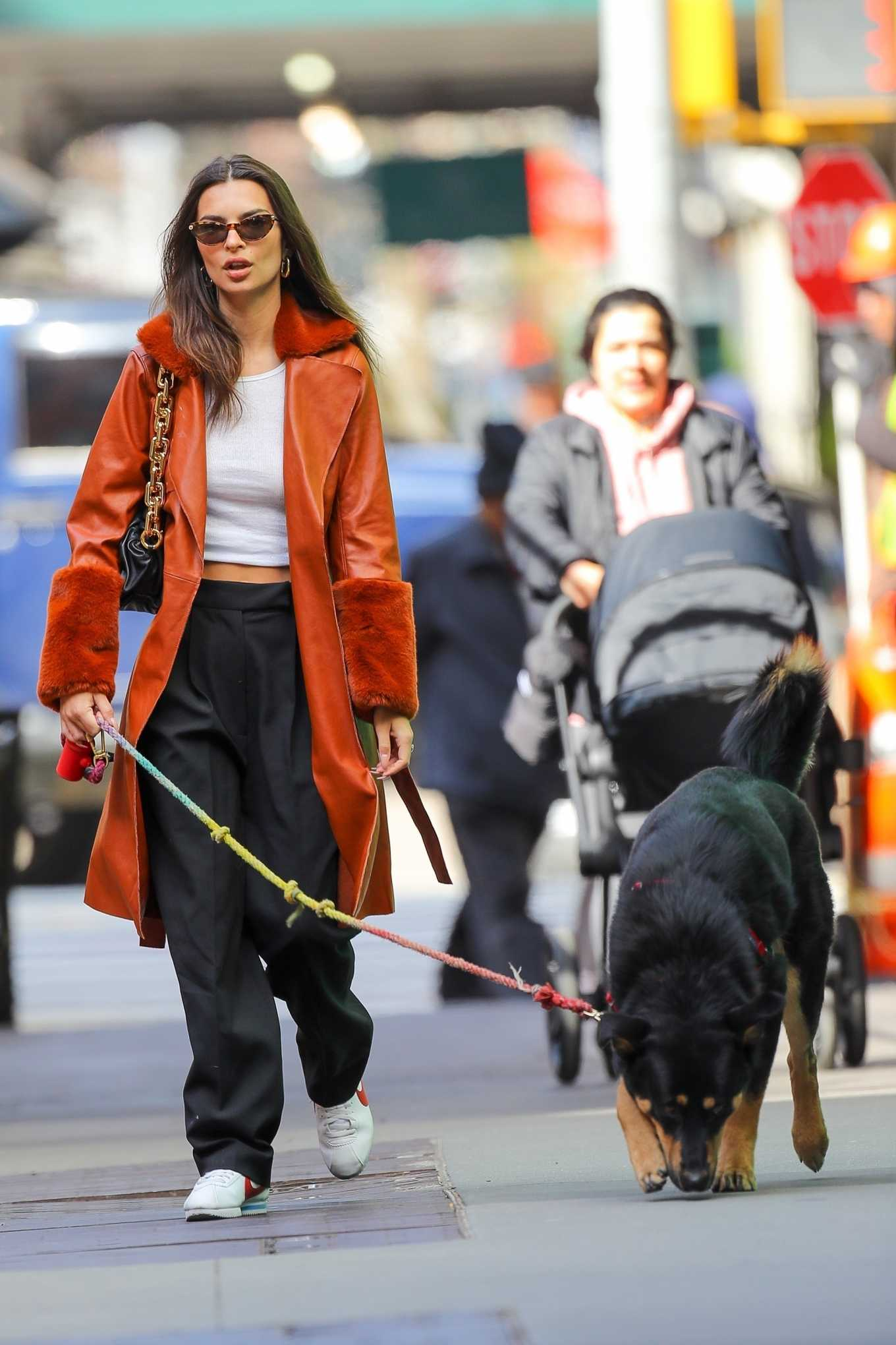 Emily Ratajkowski - Walking her dog in New York