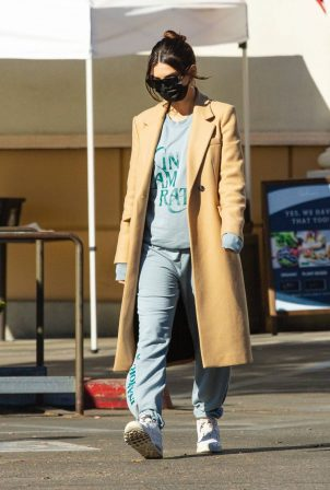 Emily Ratajkowski - Wearing a winter coat at Gelson's market in Los Angeles