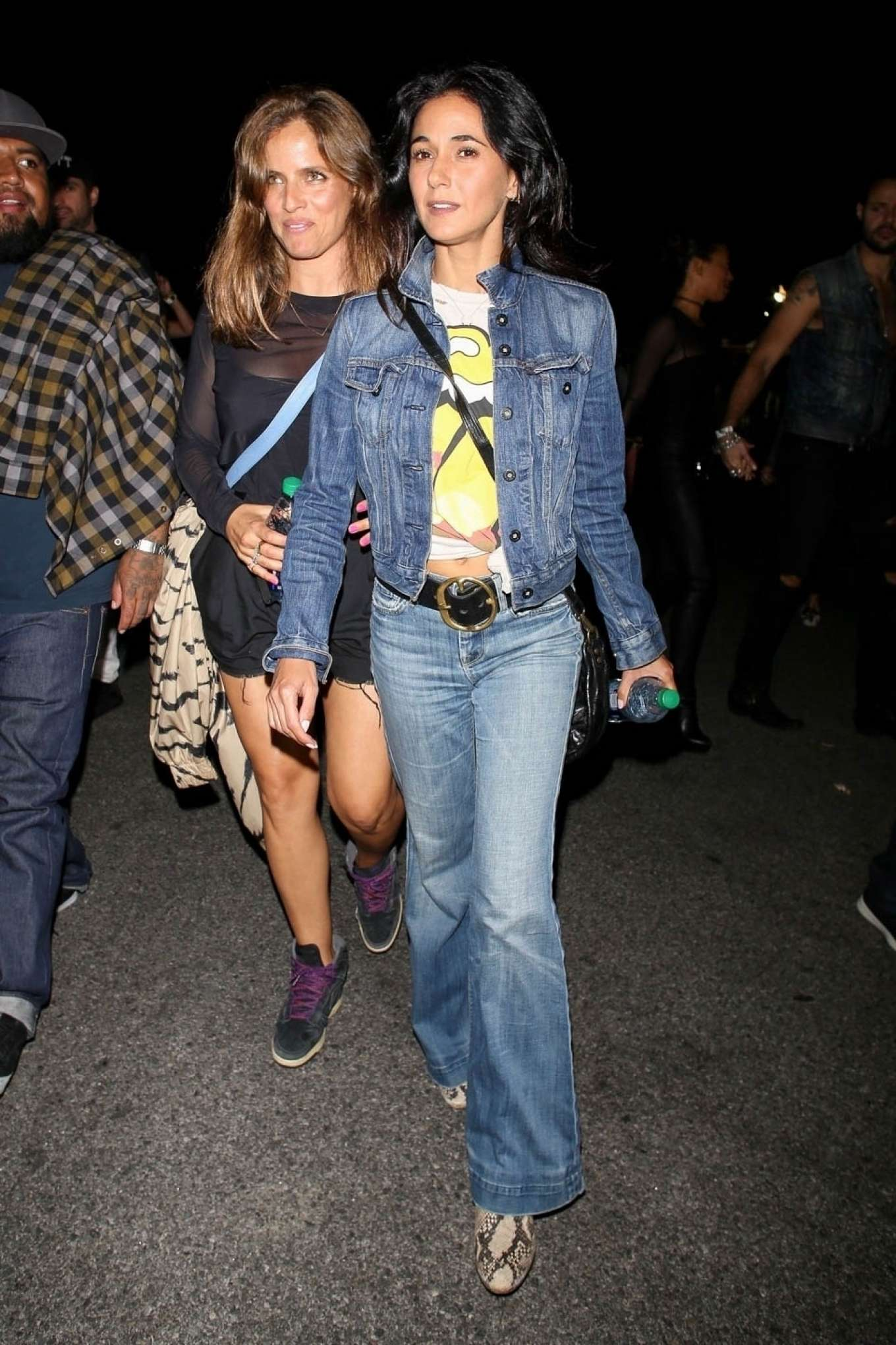 Emmanuelle Chriqui night out at the Rolling Stones Concert