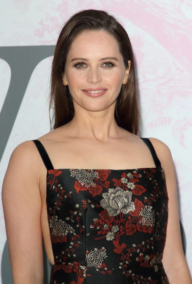Felicity Jones - The V&A Summer Party 2019 in Partnership with Dior in London