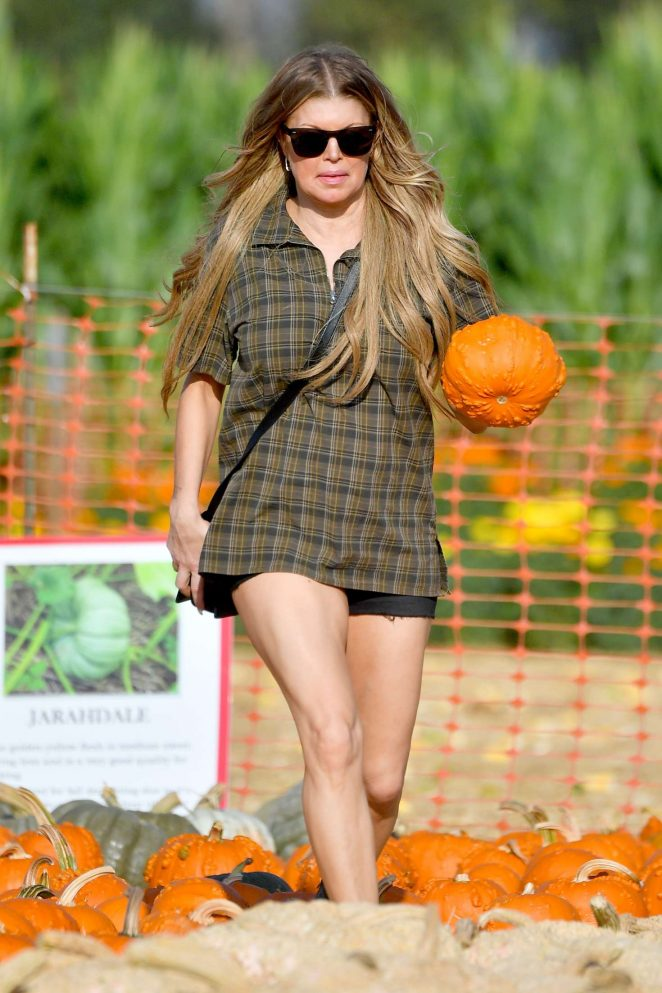 Fergie at Underwood Family Farms in Moorepark
