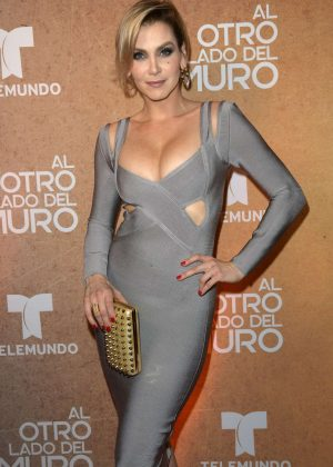 Gabriela Vergara - 'Al Otro Lado del Muro' Screening in Miami