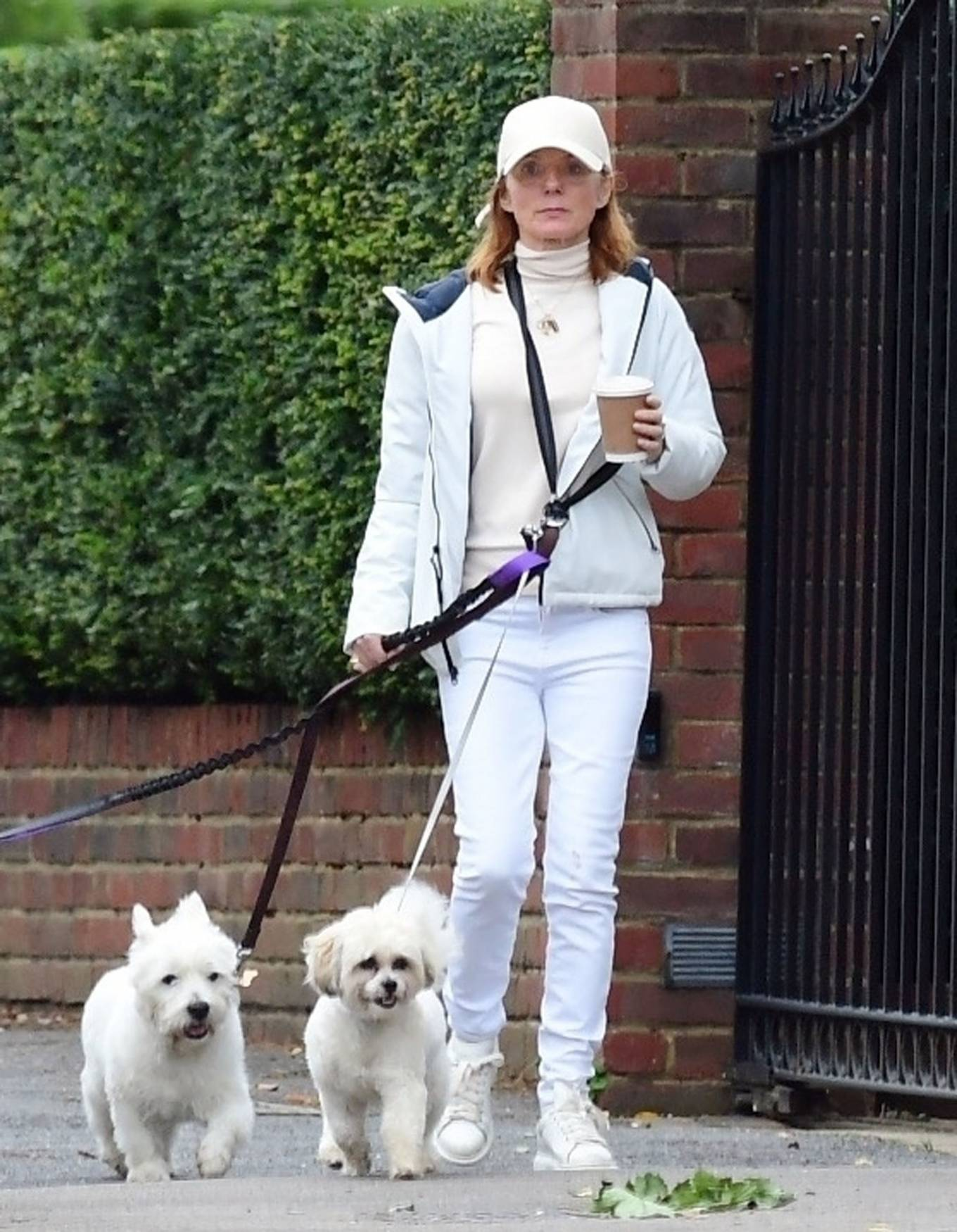 Geri Halliwell - Walking her pet dogs in North London