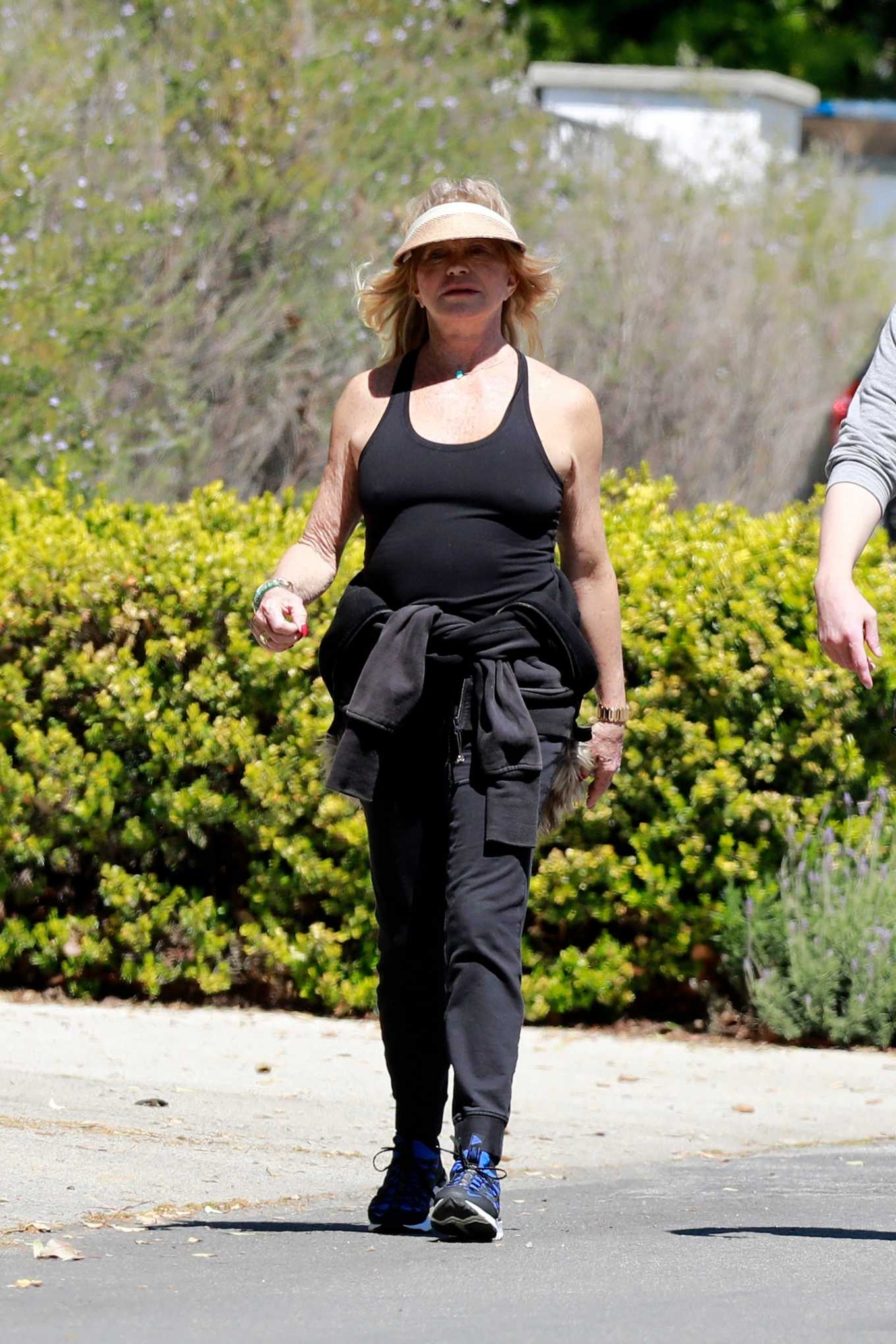 Goldie Hawn 2020 : Goldie Hawn and Boston Russell – Get a Walk in Brentwood-06