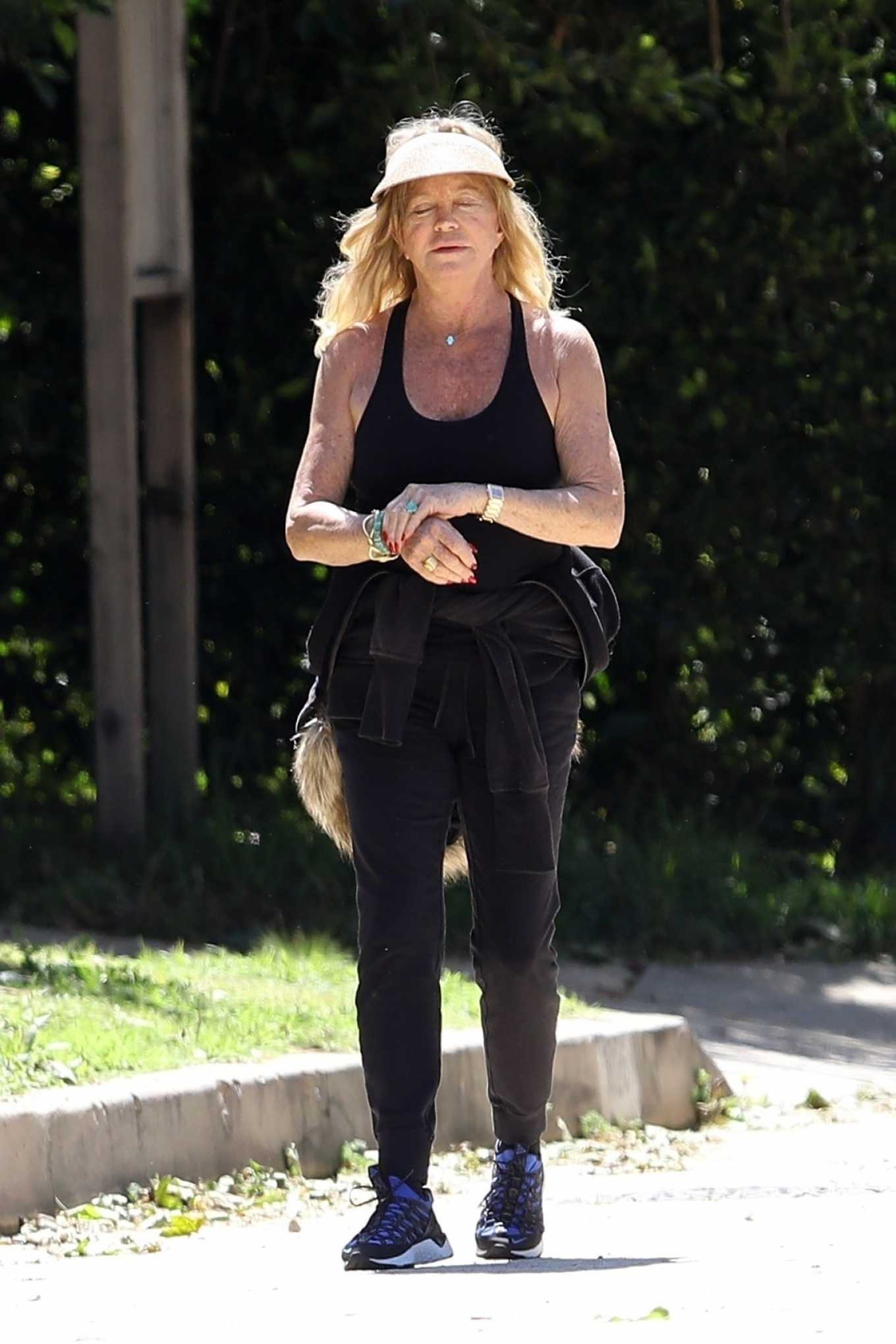 Goldie Hawn 2020 : Goldie Hawn and Boston Russell – Get a Walk in Brentwood-19