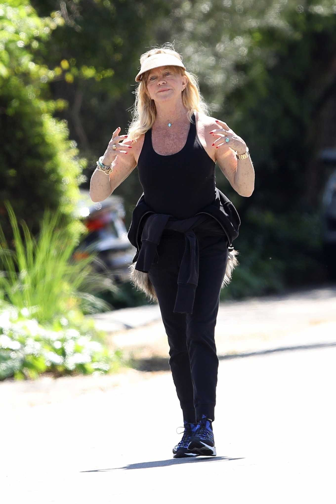 Goldie Hawn 2020 : Goldie Hawn and Boston Russell – Get a Walk in Brentwood-33