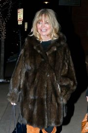 Goldie Hawn - Shopping with a friend in Aspen