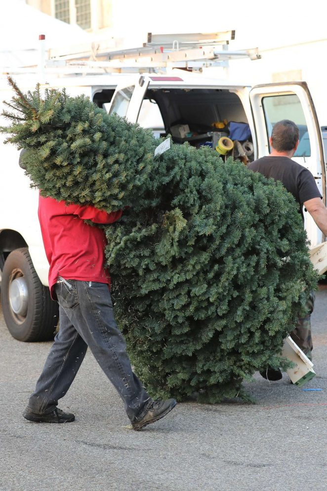 Halle Berry: Shopping for a Christmas tree -04