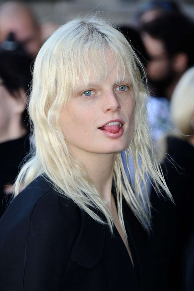 Hanne Gaby Odiele earned a  million dollar salary, leaving the net worth at 8 million in 2017