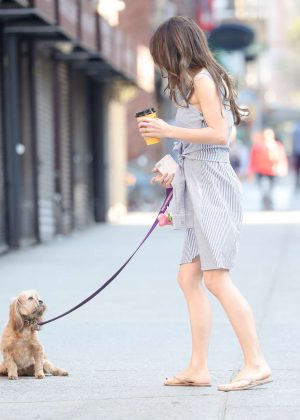 Hilaria Baldwin walks her dog in New York
