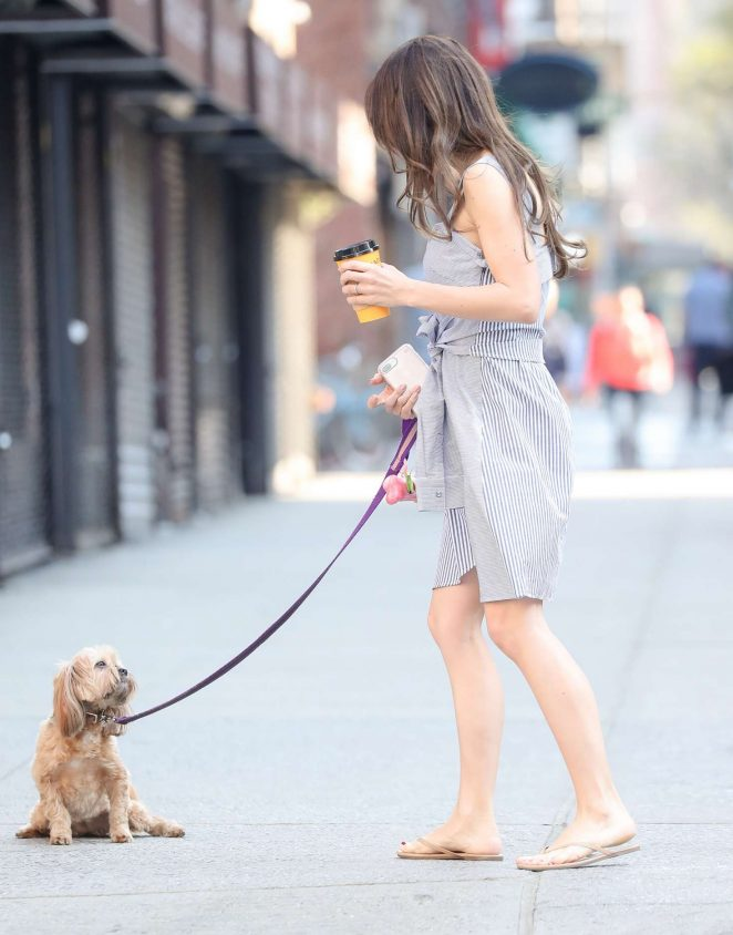 Hilaria Baldwin walks her dog in New York