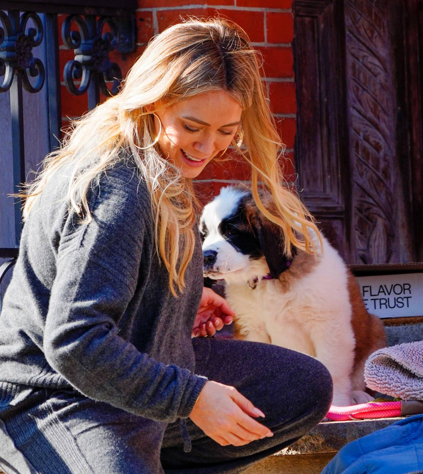Hilary Duff - Out with her new puppy in NYC