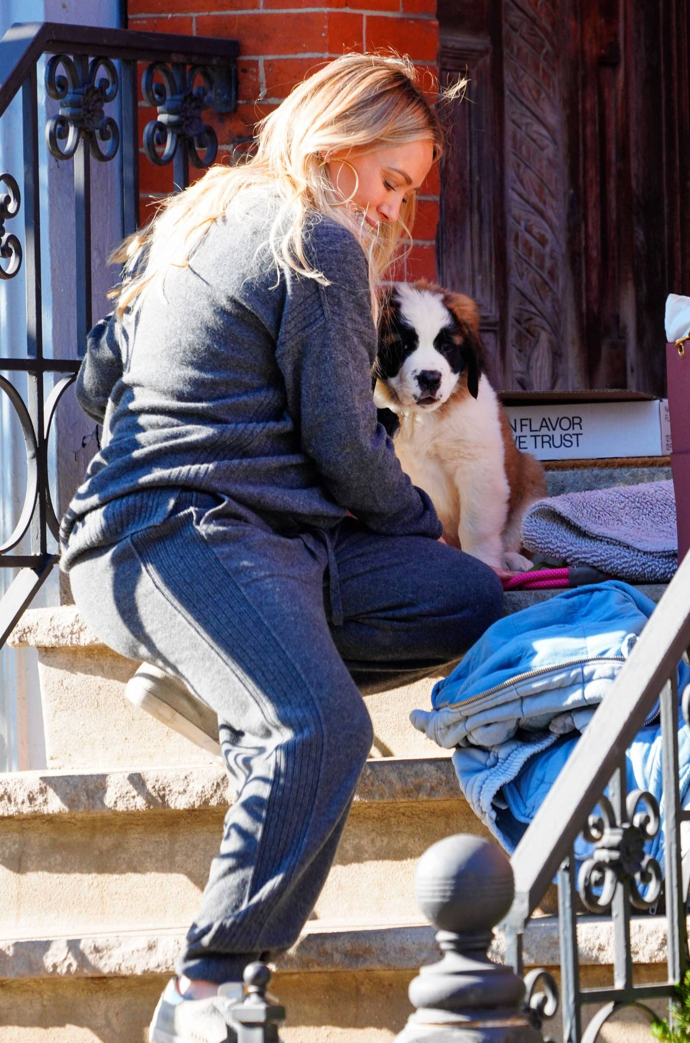 Hilary Duff 2020 : Hilary Duff – Out with her new puppy in NYC-11