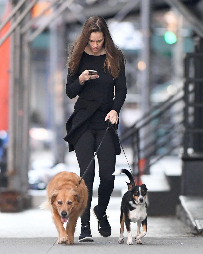 Hilary Swank with her dogs out in New York City