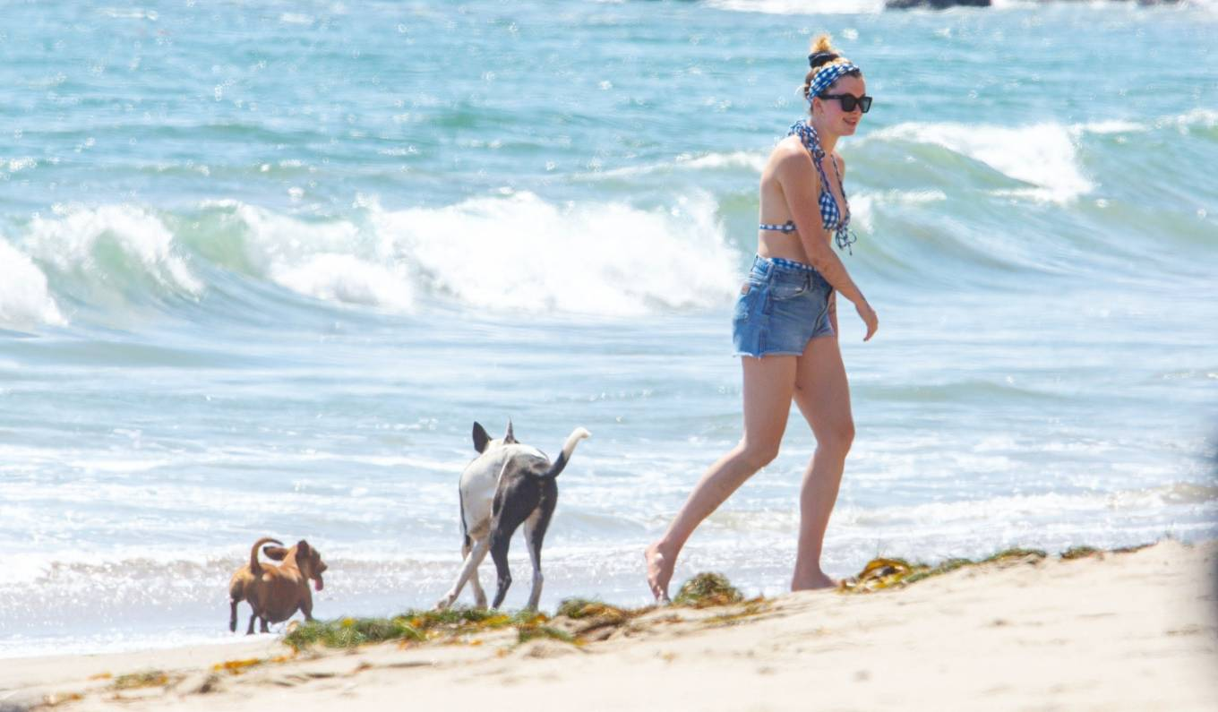 Ireland Baldwin 2020 : Ireland Baldwin in Bikini 2020-36