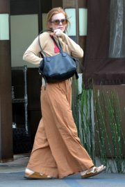 Isla Fisher - Out for lunch in Studio City