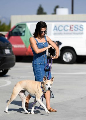 Jenna Dewan - Taking her dog Lulu to the vet in Los Angeles
