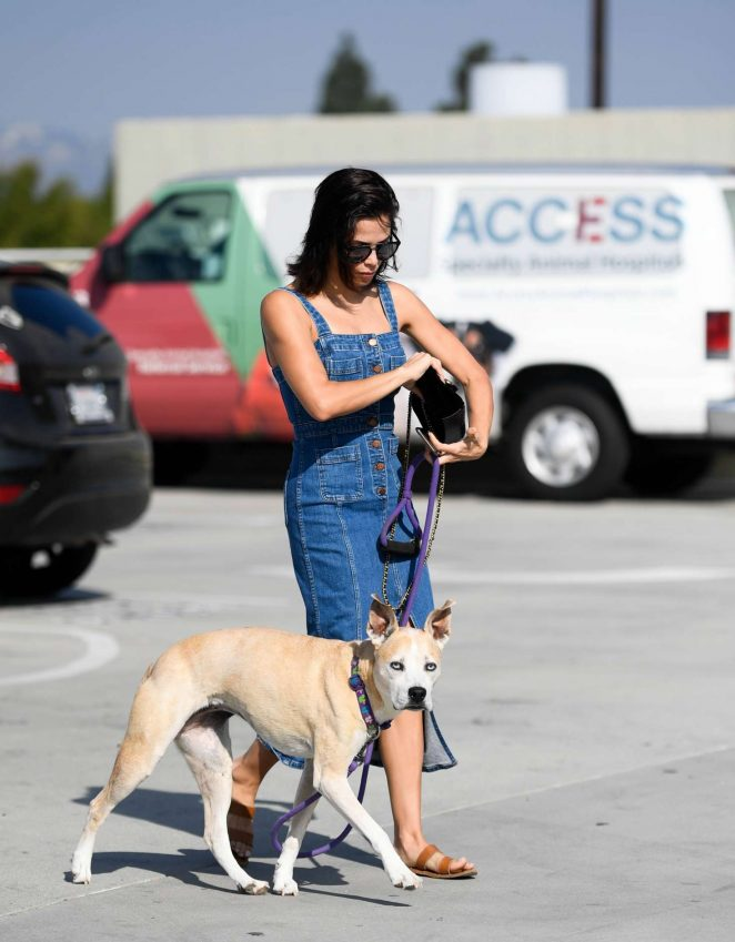 Jenna Dewan - Taking her dog Lulu to the vet in Los Angeles