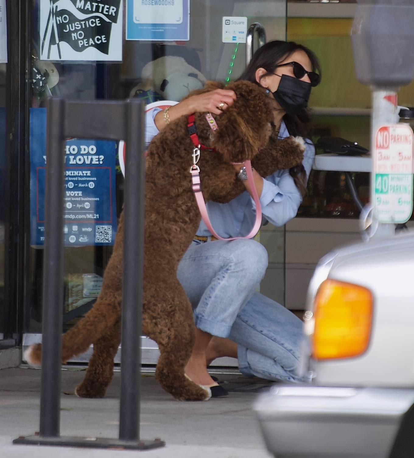 Jordana Brewster - Seen with her dog at the Groomer in Brentwood